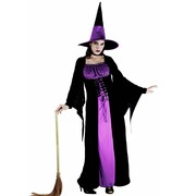 Wicked Witch Costume - Adult Plus
