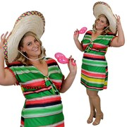 Mexican Dress Costume - Adult - Plus