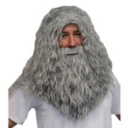 Grey Wizard Beard & Wig Set