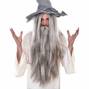 Grey Wizard Wig & Beard Set